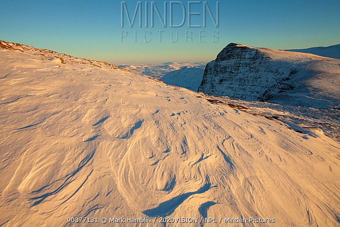 Sastrugi (irregular grooves and shapes in snow caused by wind erosion and deposition) on Ben More Coigach in winter, Coigach, Wester Ross, Scotland, UK, December 2010  -  Mark Hamblin/ 2020V/ npl