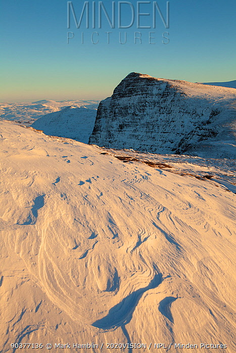Sastrugi, irregular grooves and shapes in snow caused by wind erosion and deposition, on Ben More Coigach in winter, Coigach, Wester Ross, Scotland, UK, December 2010  -  Mark Hamblin/ 2020V/ npl
