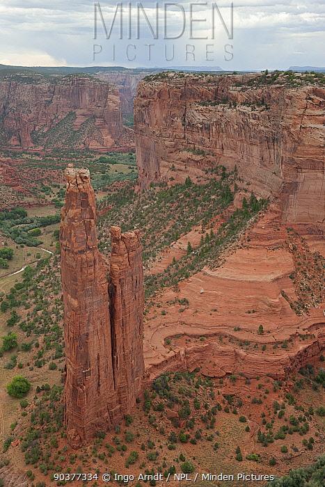 Spider Rock, Canyon de Chelly National Monument, Arizona, USA, October 2010  -  Ingo Arndt/ npl