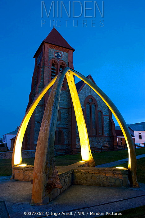 Port Stanley Christ Church Cathedral with Whale Bone Arch, erected in 1933 to celebrate a century of British rule, Falkland Islands, February 2011  -  Ingo Arndt/ npl
