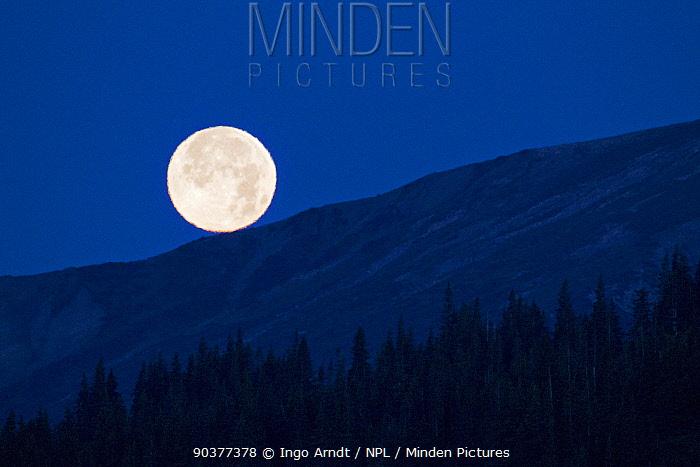 Rising full moon at Lake Clark National Park, Alaska, USA, August 2010  -  Ingo Arndt/ npl