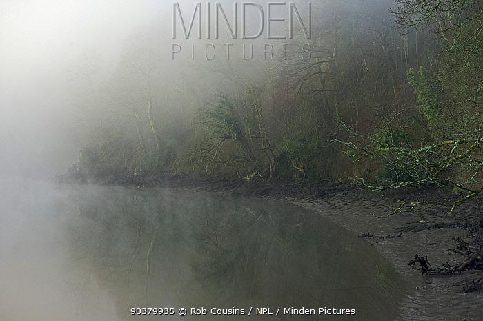 Early morning mist, River Dart, Sharpham, Devon, UK, March 2012  -  Rob Cousins/ npl