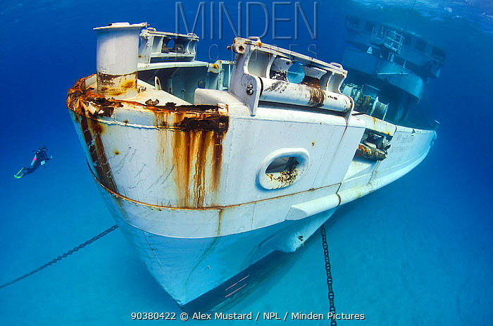 Diver approaching the wreck of the bow of the USS Kittiwake (US Military submarine rescue vessel) Photograph was taken shortly after the wreck was deliberately sunk as an attraction for scuba divers, Grand Cayman, Cayman Islands, January 2011 Model released  -  Alex Mustard/ npl