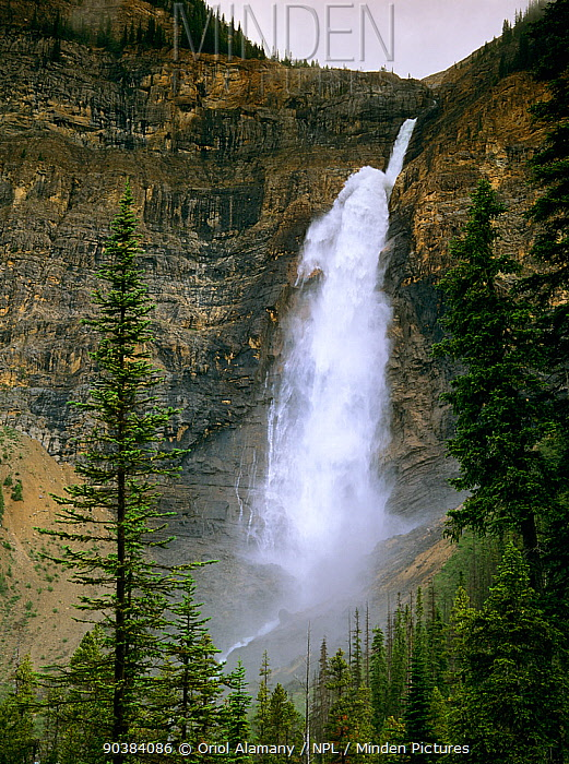 Takakkaw Falls, Yoho National Park, Rocky Mountains, British Columbia, Canada  -  Oriol Alamany/ npl