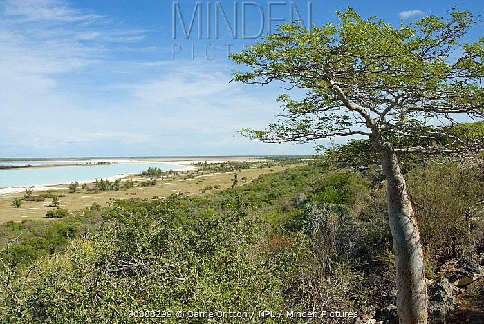 View from limestone escarpment overlooking Lac Tsimanampetsotsa, Madagascar, during the rainy season  -  Barrie Britton/ npl