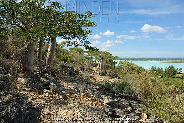 View from limestone escarpment overlooking Lac Tsimanampetsotsa, Madagascar during rainy season  -  Barrie Britton/ npl