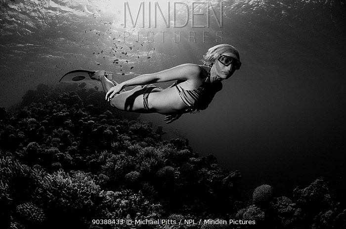 Sara Campbell, World free diving champion, Blue Hole, Egypt, Red Sea, August 2011  -  Michael Pitts/ npl