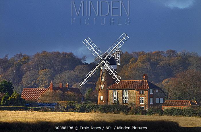 Weybourne Windmill and cottage on stormy day, Weybourne, Norfolk, November 2012  -  Ernie Janes/ npl