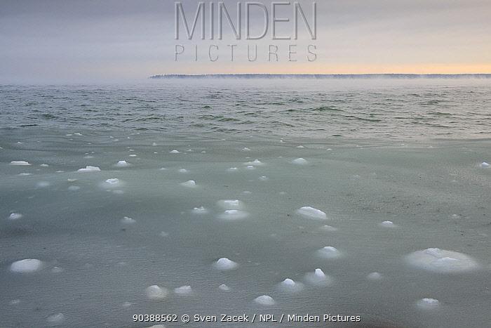 Sea-ice forming over the Baltic Sea Northern coast of Estonia, December 2012  -  Sven Zacek/ npl