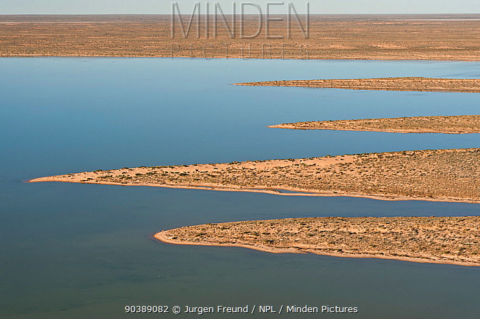 Aerial of lakes in Simpson Desert Regional Reserve Normally dry, the lakes only have water during a very wet season, South Australia, June 2011  -  Jurgen Freund/ npl
