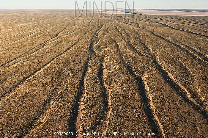 Aerial of sand dunes of Simpson Desert Regional Reserve South Australia, June 2011  -  Jurgen Freund/ npl
