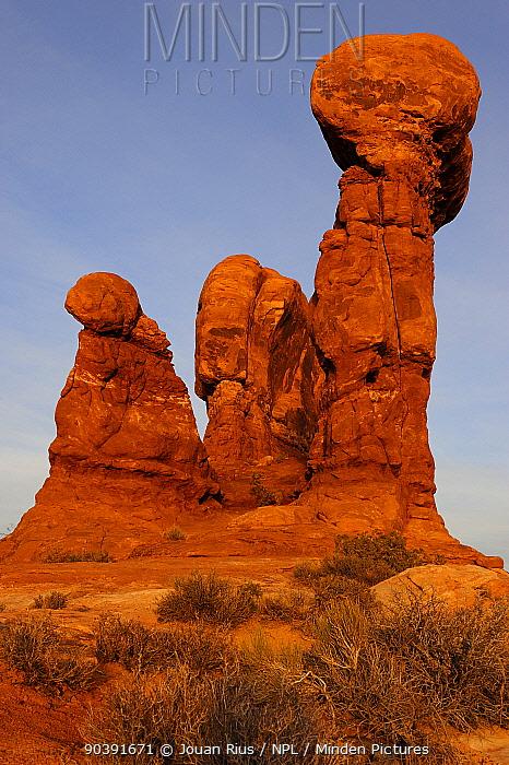 Sandstone pillars, Garden of Eden, Arches National Park, Utah, USA November 2012  -  Jouan & Rius/ npl