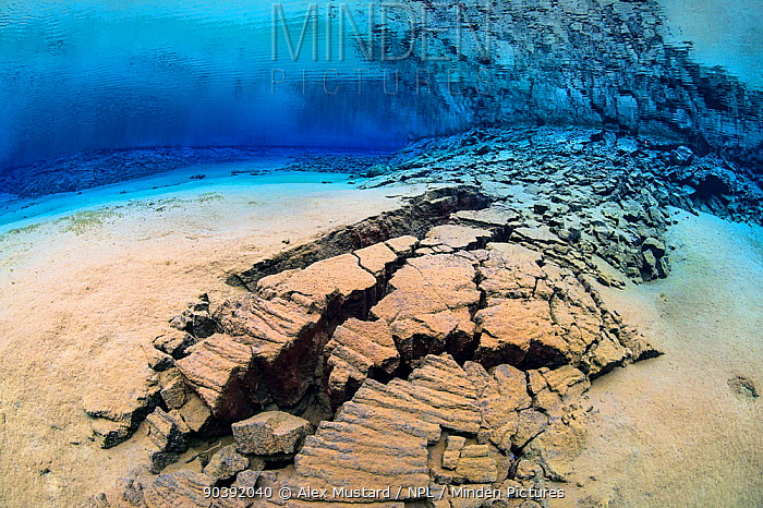 A fracture in the earth's crust in the rift valley between the American and Eurasian continental plates in Iceland This fracture was underwater in a shallow lagoon, filled with crystal clear spring water in Thingvellir National Park, Iceland May 2011  -  Alex Mustard/ npl
