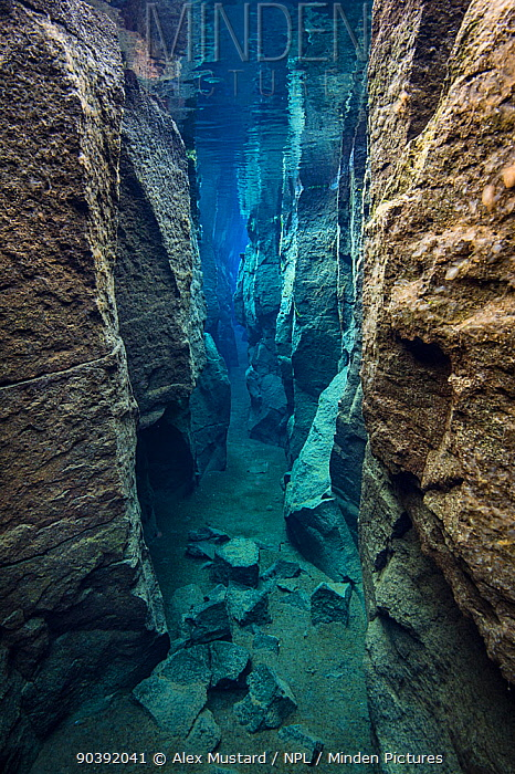The narrow Nes Canyon, a fault filled with fresh water in the rift valley between the Eurasian and American tectonic plates in northern Iceland May 2011  -  Alex Mustard/ npl