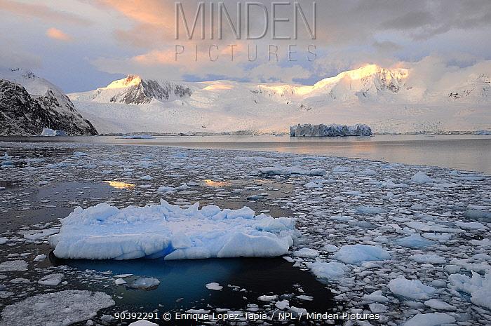 Sea ice on coast of Antarctica Peninsula, Antarctica  -  Enrique Lopez Tapia/ npl