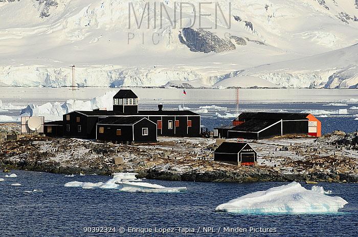 Gonzalez Videla Station surrounded by Gentoo penguins (Pygoscelis papua) Chile Antarctic Peninsula, Antarctica  -  Enrique Lopez Tapia/ npl