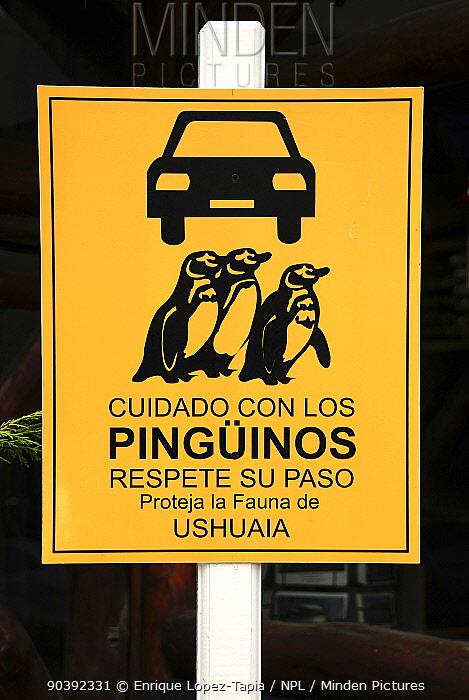Traffic sign warning of penguins crossing Ushuaia, Tierra del Fuego, Argentina  -  Enrique Lopez Tapia/ npl