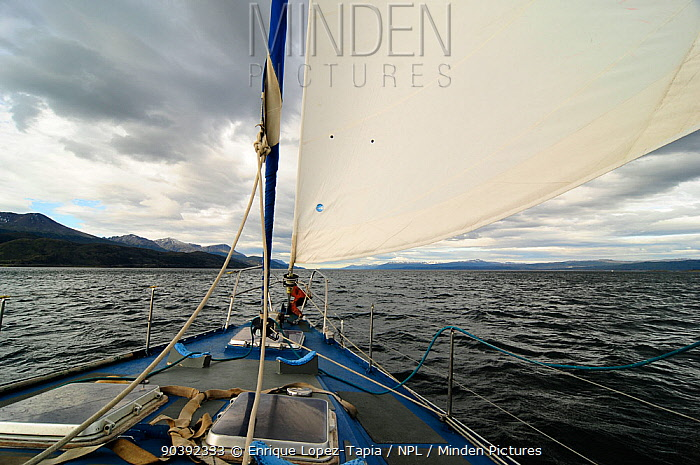 View from aboard boat navigating the Beagle Channel (named after visit of the HMS Beagle and Darwin) between Chilean and Argentinian areas of Tierre del Fuego  -  Enrique Lopez Tapia/ npl