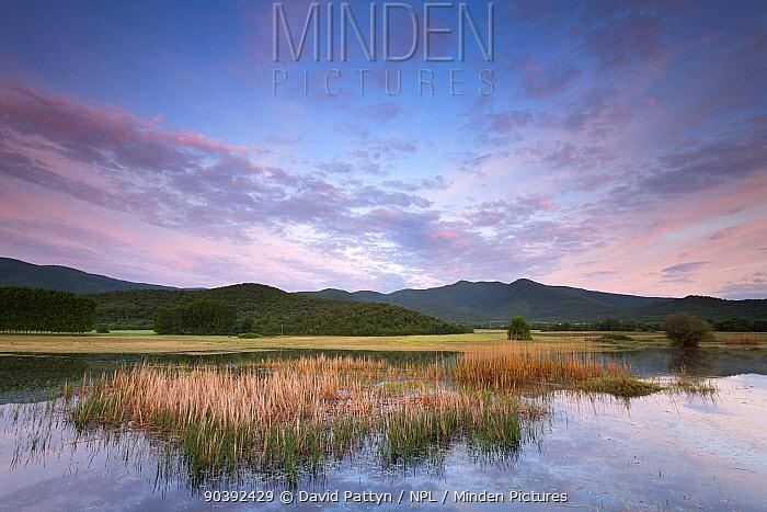 Wetlands around Lake Kerkini at dawn Lake Kerkini, Macedonia, Greece May  -  David Pattyn/ npl