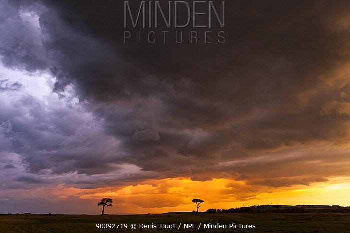 Sunset and storm over Masai-Mara Game Reserve, Kenya  -  Denis Huot/ npl