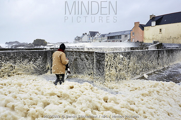 Person walking through sea foam as waves crash into Saint-Guenole during Storm Petra, Finistere, Brittany, France 5th February 2014 All non-editorial uses must be cleared individually  -  Benoit Stichelbaut/ npl