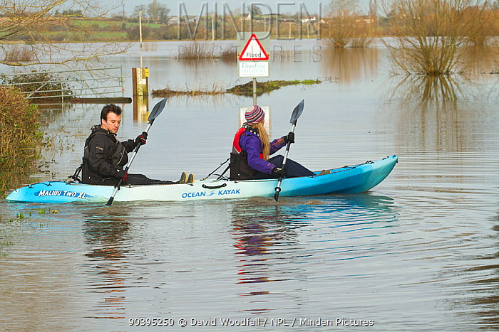 Couple in kayak during January 2014 flooding, North Curry, Somerset Levels, England, UK, 10th January 2014  -  David Woodfall/ npl