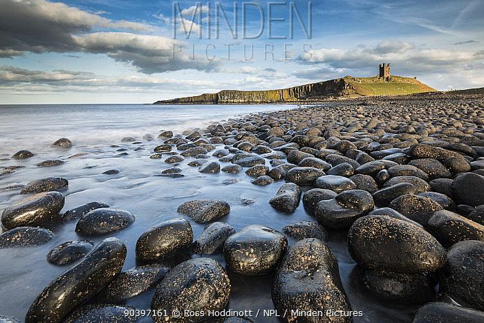 Round rocks on beach with Dunstanburgh Castlle in the distance, Northumberland, UK, April 2013  -  Ross Hoddinott/ npl