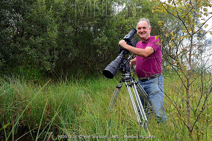 Photographer Sinclair Stammers filming pond life, Cors Caron, also known as Tregaron Bog, Ceredigion, Wales, August 2013  -  Will Watson/ npl