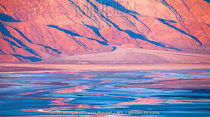 Early morning over distant mountains, creating vibrant reflections in the salt flats of Death Valley National Park, California, USA, December 2013  -  Floris Van Breugel/ npl