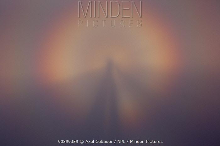 Heiligenschein phenomena, Fog bow effect through mist, Abago, Kavkazsky Zapovednik, Russia, July  -  Dr. Axel Gebauer/ npl
