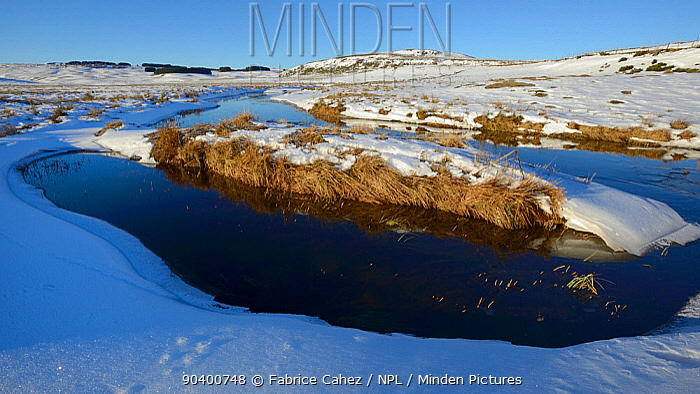 Snowy river landscape, Plateau dAubrac in winter, Lozere, Auvergne, France, December 2013  -  Fabrice Cahez/ npl