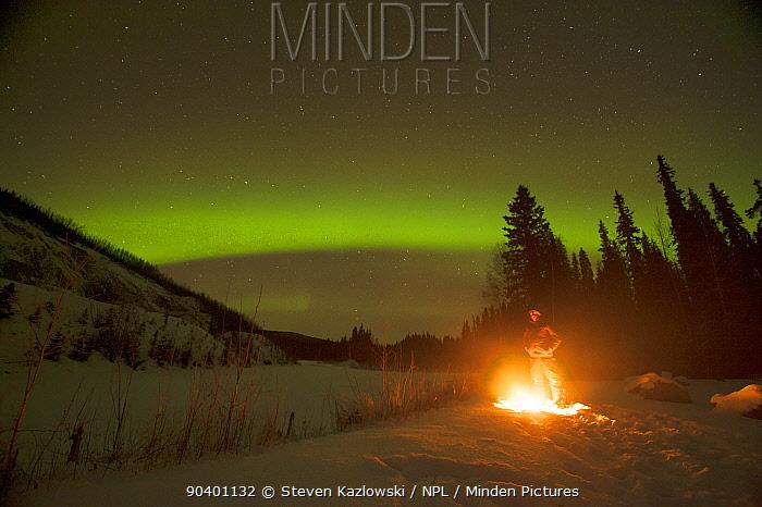 Northern lights (Aurora borealis) glowing brightly over a man enjoying a hot campfire in the Chena River State Recreational Area, outside of Fairbanks, Interior of Alaska, November 2013  -  Steven Kazlowski/ npl