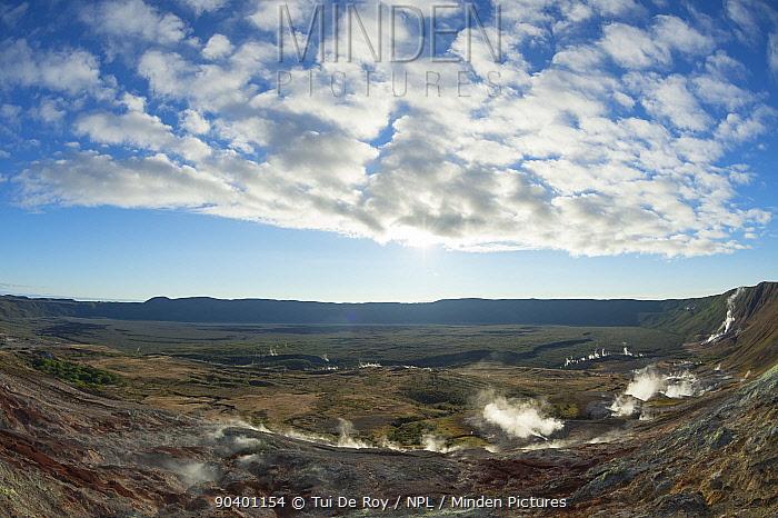 Volcanic caldera, with abundant sulphur fumaroles Alcedo Volcano, Isabela Island Galapagos Islands, July 2013  -  Tui De Roy/ npl