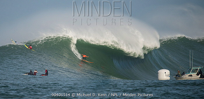 Surfers competing in the Mavericks 2014 surfing competition, watched by people on jet ski, Half Moon Bay, California, USA, January 2014  -  Michael D. Kern/ npl