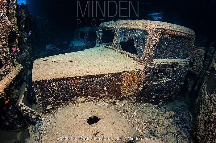Pair of British World War II Ford WOT3 trucks inside the hold of Thistlegorm, with Red Sea soldierfish (Myripristis murdjan) Shaab Ali, Sinai, Egypt Red Sea  -  npl/ npl