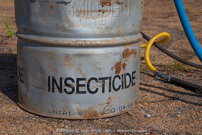 Barrel with insecticide for Food and Agriculture Organization (FAO) control action against migratory locust (Locusta migratoria capito), Airport Miandrivazo, Madagascar December 2013  -  Ingo Arndt/ npl