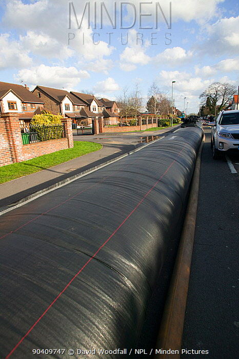 Flood protection barrier (filled with water) to protect homes during February 2014 flooding Chertsey, Surrey, England, UK, 16th February 2014  -  David Woodfall/ npl