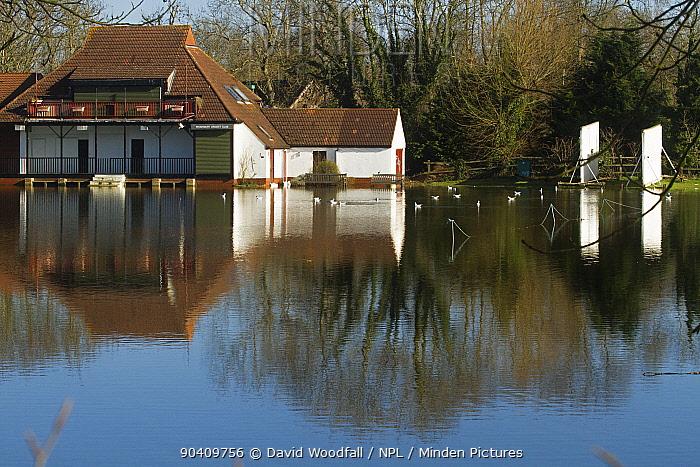 Wraysbury cricket pitch under water in February 2014 floods, Wraysbury, England, UK, 16th February 2014  -  David Woodfall/ npl