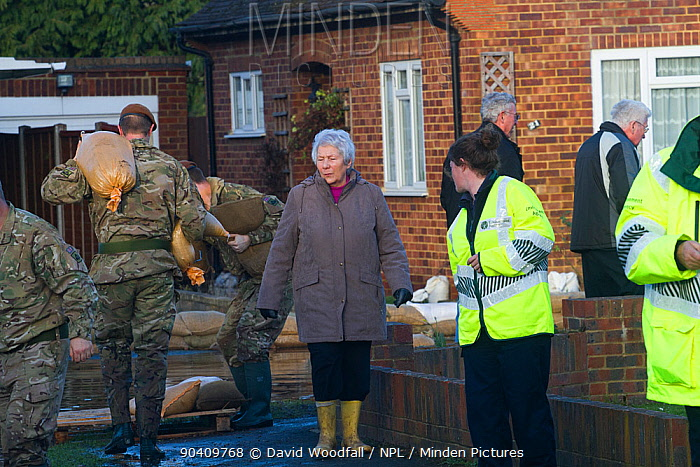 Army, residents and Environment Agency staff in flooded street after February 2014 flooding, helping to provide support for the residents, Chertsey, Surrey, England, UK, 16th February 2014  -  David Woodfall/ npl
