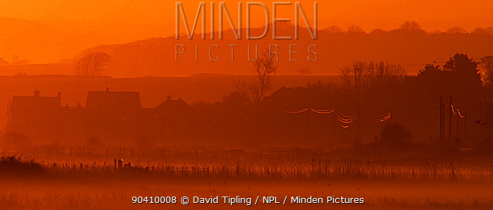 Salthouse Marshes at sunrise in early spring North Norfolk, England, UK, March 2014  -  David Tipling/ npl