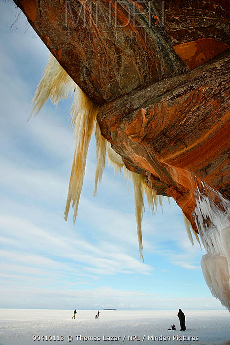 Jagged icicles hanging from towering sandstone cliff, Apostle Islands National Lakeshore, Lake Superior, Squaw Bay, Wisconsin, February 2014  -  Thomas Lazar/ npl