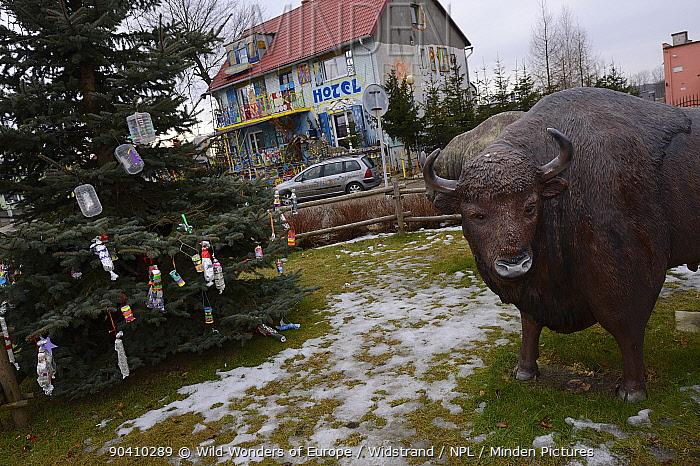 Fibreglass statues of European bison (Bison bonasus) in a village in the Drawsko area, Western Pomerania, Poland, February 2014  -  WWE/ Widstrand/ npl