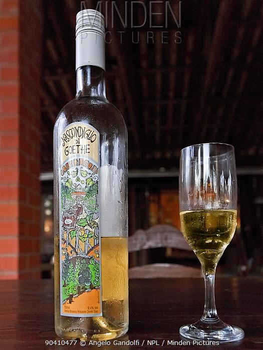 Bottle of wine produced in Brazils southern states, Santa Catarina State, Brazil  -  Angelo Gandolfi/ npl