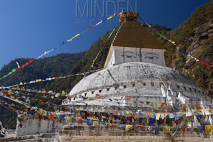 Gorsam Chorten (Buddhist Stupa), near Zemitang, Arunachal Pradesh, India January 20104  -  Bernard Castelein/ npl