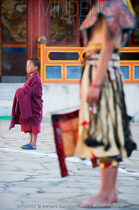 Young monk watching Zamcham (one of the monastic dances) This dance is performed to safeguard the venue, which has been neutralized by the preceding Phagcham (pig dance) Torgya festival Galdan Namge Lhatse Monastery, Tawang, Arunachal Pradesh, India January 2014  -  Bernard Castelein/ npl