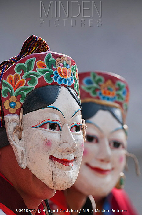 Gonyingcham, a dance performed in reference to the heavenly angels mentioned in Tantrayana Buddhism These angels represent the beautiful girls from different villages of the Mon region Torgya festival Galdan Namge Lhatse Monastery, Tawang, Arunachal Pradesh, India January 2014  -  Bernard Castelein/ npl