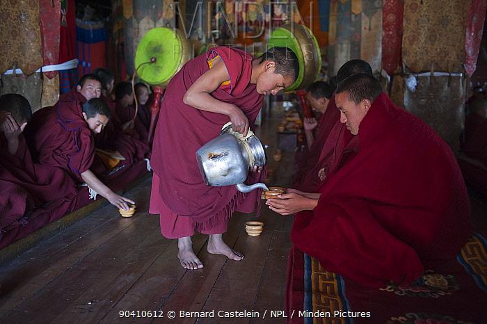 Young monk serving Yak tea during pudja break Torgya festival Galdan Namge Lhatse Monastery, Tawang, Arunachal Pradesh, India January 2014  -  Bernard Castelein/ npl