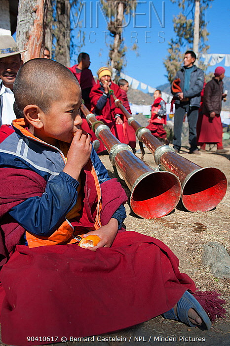 Young Buddhist monk watching dance rehearsals one day before the Torgya festival Galdan Namge Lhatse Monastery,Tawang, Arunachal Pradesh, India January 2014  -  Bernard Castelein/ npl
