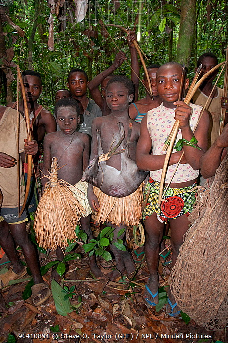 mbuti pygmies and marriage Mbuti or bambuti are one of several indigenous pygmy groups in the congo region of africatheir languages are central sudanic languages (a family of the nilo-saharan phylum) and bantu.