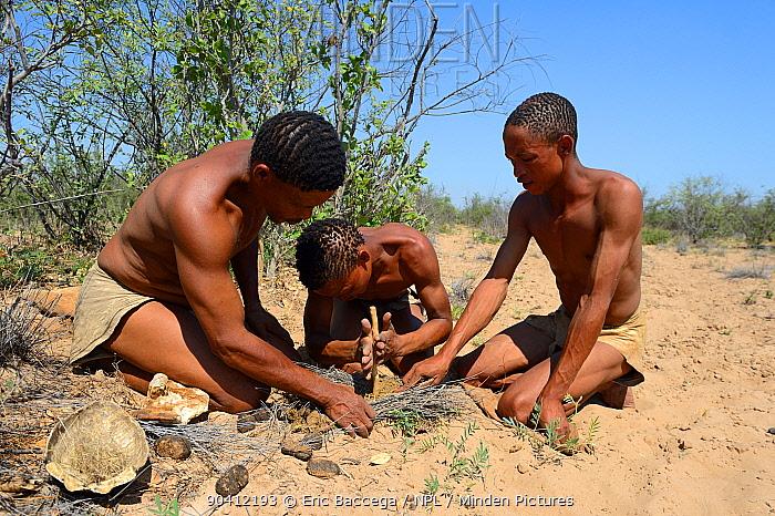 Naro San Bushmen making fire by turning sticks, Kalahari, Ghanzi region, Botswana, Africa Dry season, October 2014  -  Eric Baccega/ npl